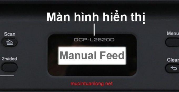 loi-manual-feed-no-pager