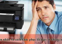 máy in không in được trên windows 10